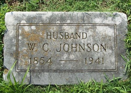 JOHNSON, WARNER C. - Newton County, Missouri | WARNER C. JOHNSON - Missouri Gravestone Photos