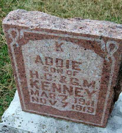 KENNEY, ADDIE IRVINE - Newton County, Missouri | ADDIE IRVINE KENNEY - Missouri Gravestone Photos