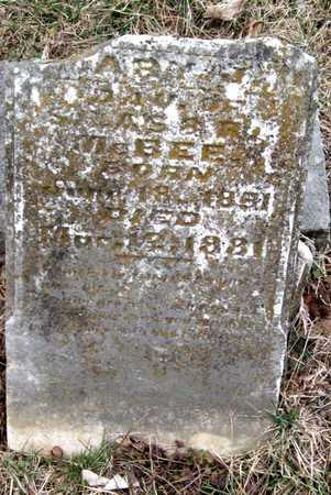 MCBEE, MARY J - Newton County, Missouri | MARY J MCBEE - Missouri Gravestone Photos