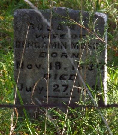 "MOSER, ROSANNA ""ROSIE"" - Newton County, Missouri | ROSANNA ""ROSIE"" MOSER - Missouri Gravestone Photos"