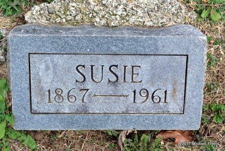 SCHWEITZER, SUSIE - Newton County, Missouri | SUSIE SCHWEITZER - Missouri Gravestone Photos