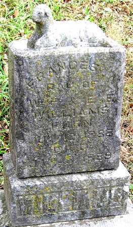 WILLIAMS, FRANCES A - Newton County, Missouri | FRANCES A WILLIAMS - Missouri Gravestone Photos