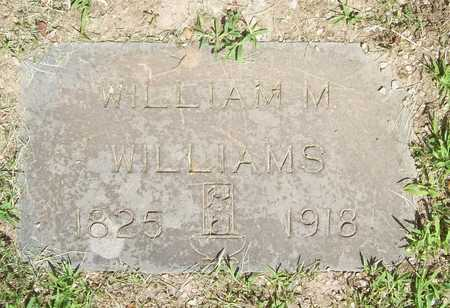 WILLIAMS, WILLIAM M. - Newton County, Missouri | WILLIAM M. WILLIAMS - Missouri Gravestone Photos