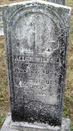 WILSON, ALLEN - Newton County, Missouri | ALLEN WILSON - Missouri Gravestone Photos