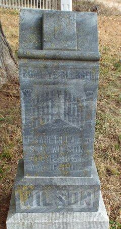 WILSON, ELISABETH ISABEL - Newton County, Missouri | ELISABETH ISABEL WILSON - Missouri Gravestone Photos