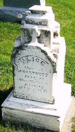 "DISS HARTNETT, ALICE M ""ALLIE"" - Nodaway County, Missouri | ALICE M ""ALLIE"" DISS HARTNETT - Missouri Gravestone Photos"