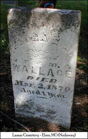 WALLACE, FLORA E. A. - Nodaway County, Missouri | FLORA E. A. WALLACE - Missouri Gravestone Photos