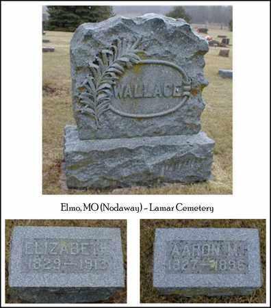 WALLACE, ELIZABETH - Nodaway County, Missouri | ELIZABETH WALLACE - Missouri Gravestone Photos