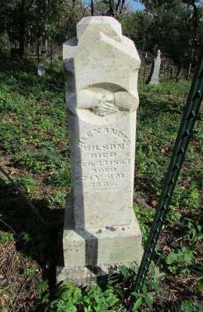 WILSON, ALEXANDER - Nodaway County, Missouri   ALEXANDER WILSON - Missouri Gravestone Photos