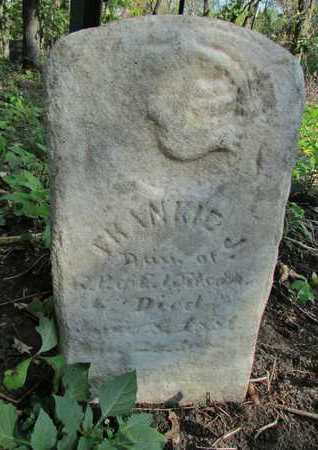 WILSON, FRANKIE J. - Nodaway County, Missouri | FRANKIE J. WILSON - Missouri Gravestone Photos