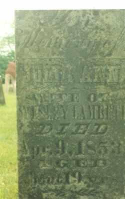 LAMBETH, JULIA ANN - Osage County, Missouri | JULIA ANN LAMBETH - Missouri Gravestone Photos