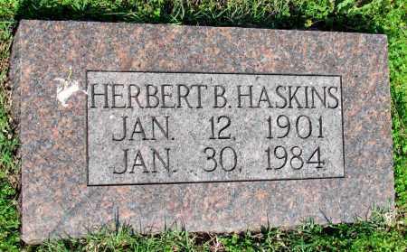 HASKINS, HERBERT B - Ozark County, Missouri | HERBERT B HASKINS - Missouri Gravestone Photos