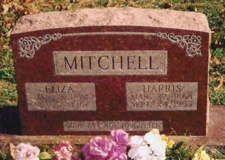 "MITCHELL, THOMAS HARRISON ""HARRIS"" - Ozark County, Missouri | THOMAS HARRISON ""HARRIS"" MITCHELL - Missouri Gravestone Photos"