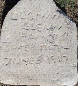HAM, LONNIE GLENN JR - Pemiscot County, Missouri | LONNIE GLENN JR HAM - Missouri Gravestone Photos