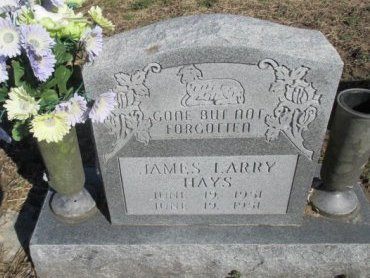 HAYS, JAMES LARRY - Pemiscot County, Missouri | JAMES LARRY HAYS - Missouri Gravestone Photos