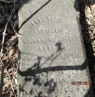 HENDRICK, JULIUS A. - Pemiscot County, Missouri | JULIUS A. HENDRICK - Missouri Gravestone Photos