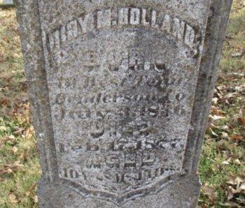 HOLLAND, DILLY M. - Pemiscot County, Missouri   DILLY M. HOLLAND - Missouri Gravestone Photos