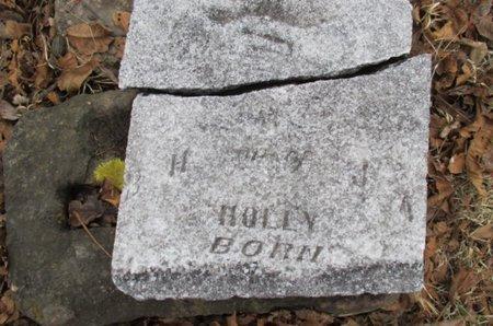 HOLLY, ILLEGIBLE - Pemiscot County, Missouri | ILLEGIBLE HOLLY - Missouri Gravestone Photos