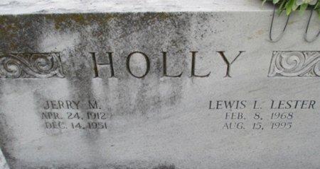HOLLY, JERRY M. - Pemiscot County, Missouri | JERRY M. HOLLY - Missouri Gravestone Photos