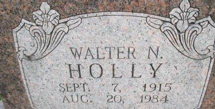 HOLLY, WALTER NEWTON - Pemiscot County, Missouri | WALTER NEWTON HOLLY - Missouri Gravestone Photos