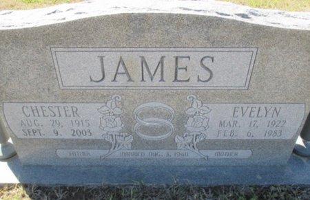 JAMES, CHESTER - Pemiscot County, Missouri | CHESTER JAMES - Missouri Gravestone Photos