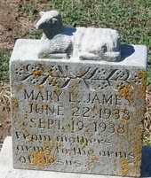 JAMES, MARY LEE - Pemiscot County, Missouri | MARY LEE JAMES - Missouri Gravestone Photos