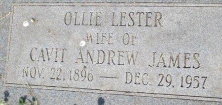 JAMES, OLLIE - Pemiscot County, Missouri | OLLIE JAMES - Missouri Gravestone Photos