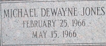 JONES, MICHAEL DEWAYNE - Pemiscot County, Missouri | MICHAEL DEWAYNE JONES - Missouri Gravestone Photos