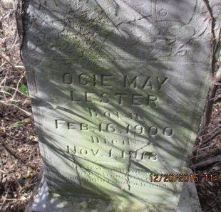 LESTER, OCIE MAY - Pemiscot County, Missouri | OCIE MAY LESTER - Missouri Gravestone Photos