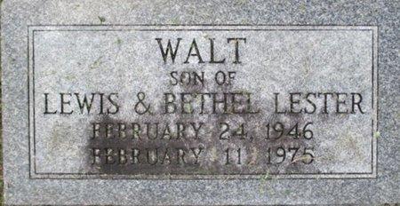 LESTER, WALT - Pemiscot County, Missouri | WALT LESTER - Missouri Gravestone Photos