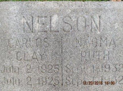 NELSON, CARLOS CLAY - Pemiscot County, Missouri | CARLOS CLAY NELSON - Missouri Gravestone Photos