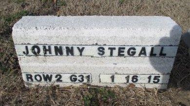 STEGALL, JOHNNY LYNN - Pemiscot County, Missouri | JOHNNY LYNN STEGALL - Missouri Gravestone Photos