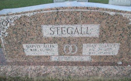 STEGALL, JOAN JANICE - Pemiscot County, Missouri | JOAN JANICE STEGALL - Missouri Gravestone Photos
