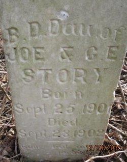 STORY, B. D. - Pemiscot County, Missouri | B. D. STORY - Missouri Gravestone Photos