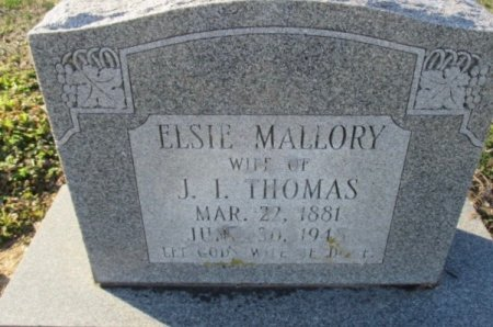 THOMAS, JULIA ELSIE - Pemiscot County, Missouri | JULIA ELSIE THOMAS - Missouri Gravestone Photos