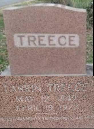 TREECE, ROBERT LARKIN DR - Pemiscot County, Missouri | ROBERT LARKIN DR TREECE - Missouri Gravestone Photos