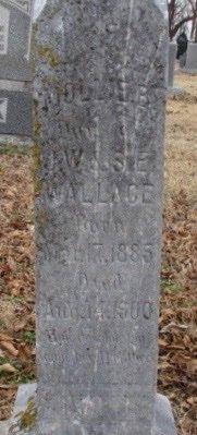 WALLACE, MOLLY B. - Pemiscot County, Missouri | MOLLY B. WALLACE - Missouri Gravestone Photos