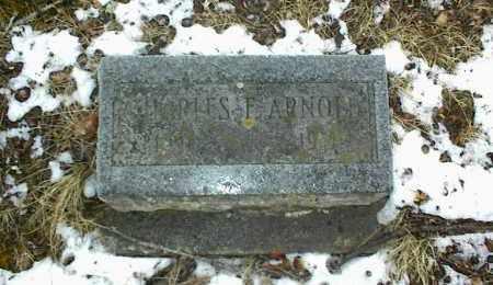 ARNOLD, CHARLES F. - Phelps County, Missouri | CHARLES F. ARNOLD - Missouri Gravestone Photos