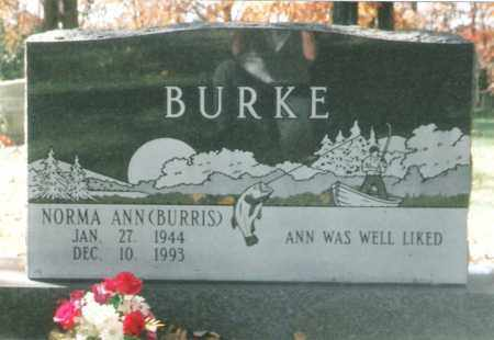 BURRIS BURKE, NORMA ANN - Phelps County, Missouri | NORMA ANN BURRIS BURKE - Missouri Gravestone Photos