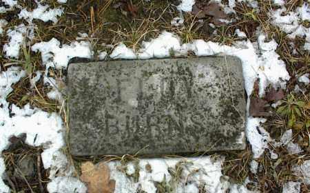 BURNS, FLOY - Phelps County, Missouri | FLOY BURNS - Missouri Gravestone Photos