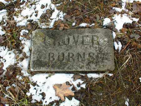 BURNS, GROVER - Phelps County, Missouri | GROVER BURNS - Missouri Gravestone Photos