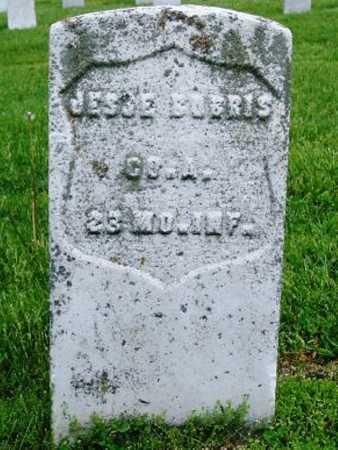 BURRIS, JESSE VETERAN - Phelps County, Missouri | JESSE VETERAN BURRIS - Missouri Gravestone Photos