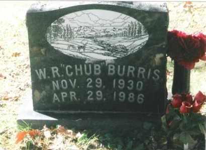 "BURRIS, WILLIS RAY ""CHUB"" - Phelps County, Missouri | WILLIS RAY ""CHUB"" BURRIS - Missouri Gravestone Photos"