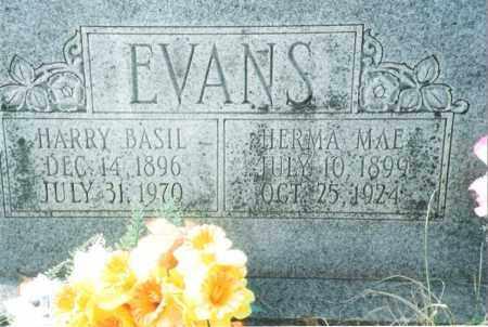 LENOX EVANS, HERMA MAE - Phelps County, Missouri | HERMA MAE LENOX EVANS - Missouri Gravestone Photos