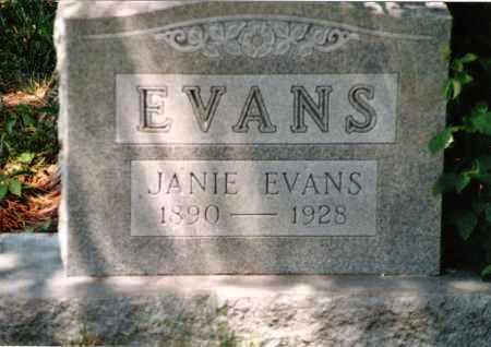 "HEFLIN EVANS, LULA JANE ""JANIE"" - Phelps County, Missouri | LULA JANE ""JANIE"" HEFLIN EVANS - Missouri Gravestone Photos"