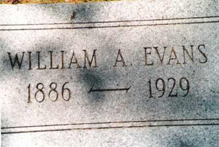 "EVANS, WILLIAM ALBERT ""ALBERT"" - Phelps County, Missouri | WILLIAM ALBERT ""ALBERT"" EVANS - Missouri Gravestone Photos"
