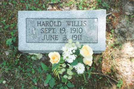 WILLIS, HAROLD - Phelps County, Missouri | HAROLD WILLIS - Missouri Gravestone Photos