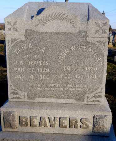 BEAVERS, JOHN W - Pike County, Missouri | JOHN W BEAVERS - Missouri Gravestone Photos