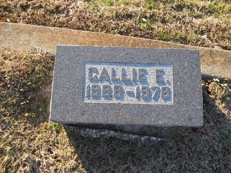 HADEN, CALLIE E - Pike County, Missouri   CALLIE E HADEN - Missouri Gravestone Photos