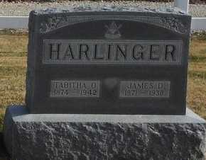 HARLINGER, JAMES D - Pike County, Missouri | JAMES D HARLINGER - Missouri Gravestone Photos